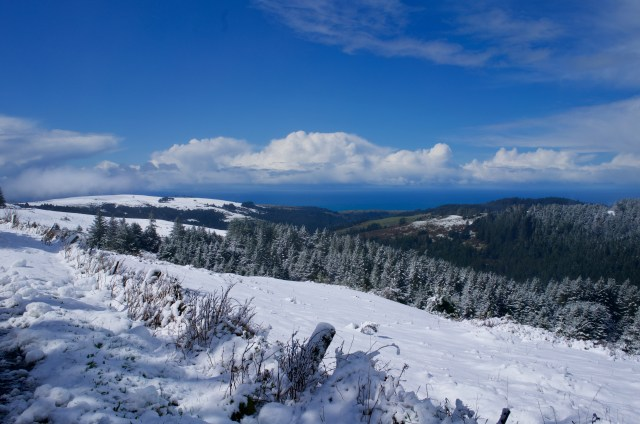 Looking out at the blue sky and ocean in the distance, and snowy landscapes in the foreground