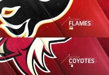 Calgary Flames vs. Arizona Coyotes