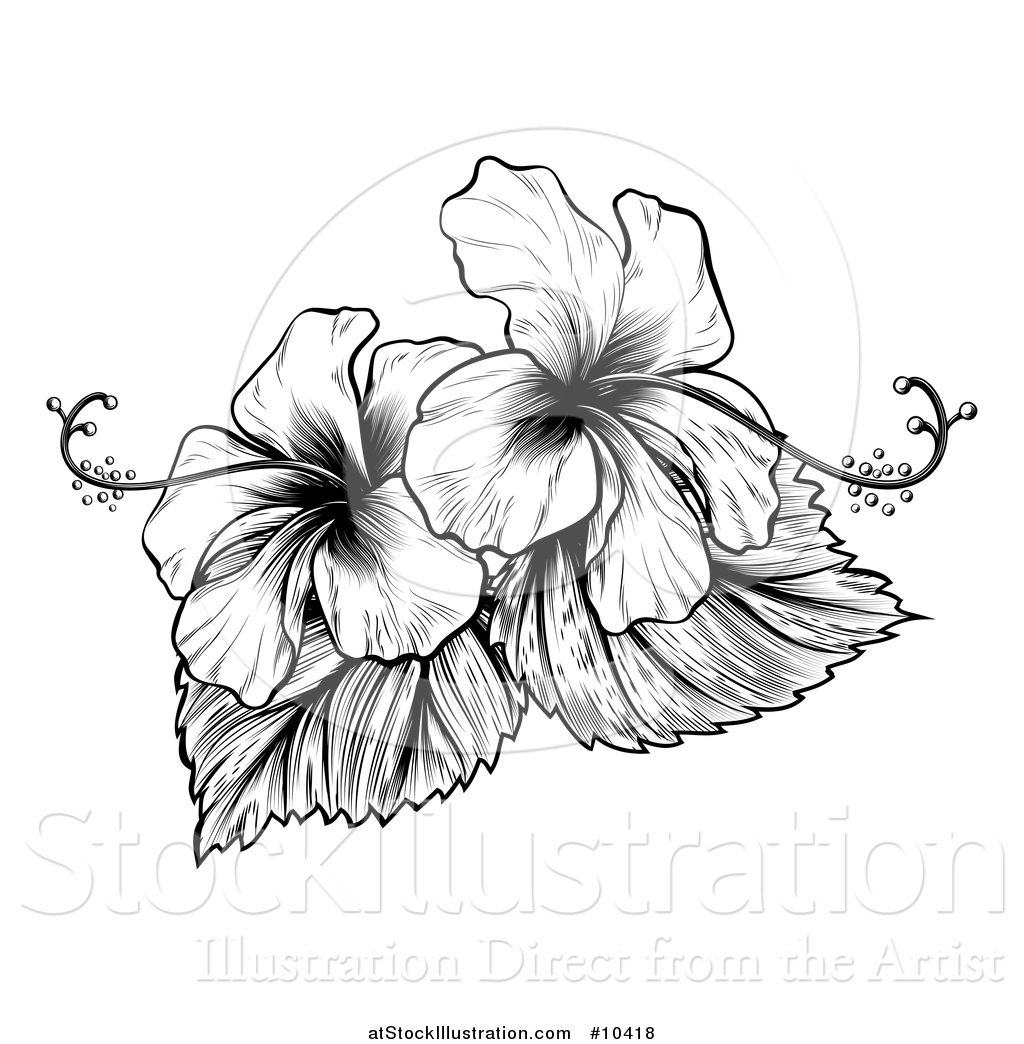 Vector Illustration Of A Vintage Black And White Engraved
