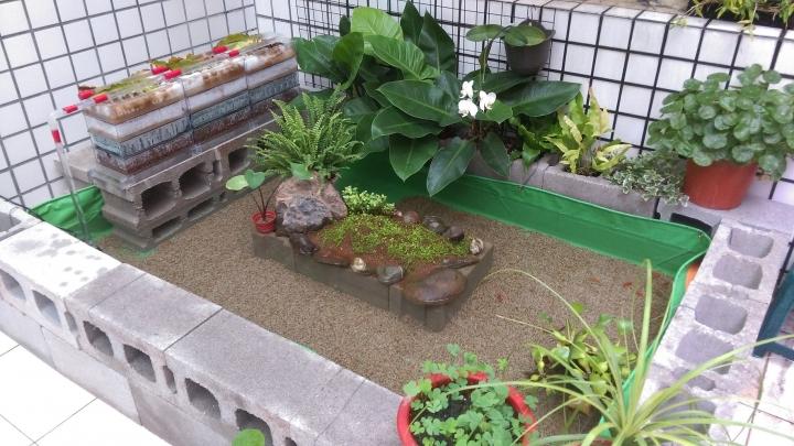 後陽臺的生態帆布池 - 動物與寵物 - 生活討論區 - Mobile01