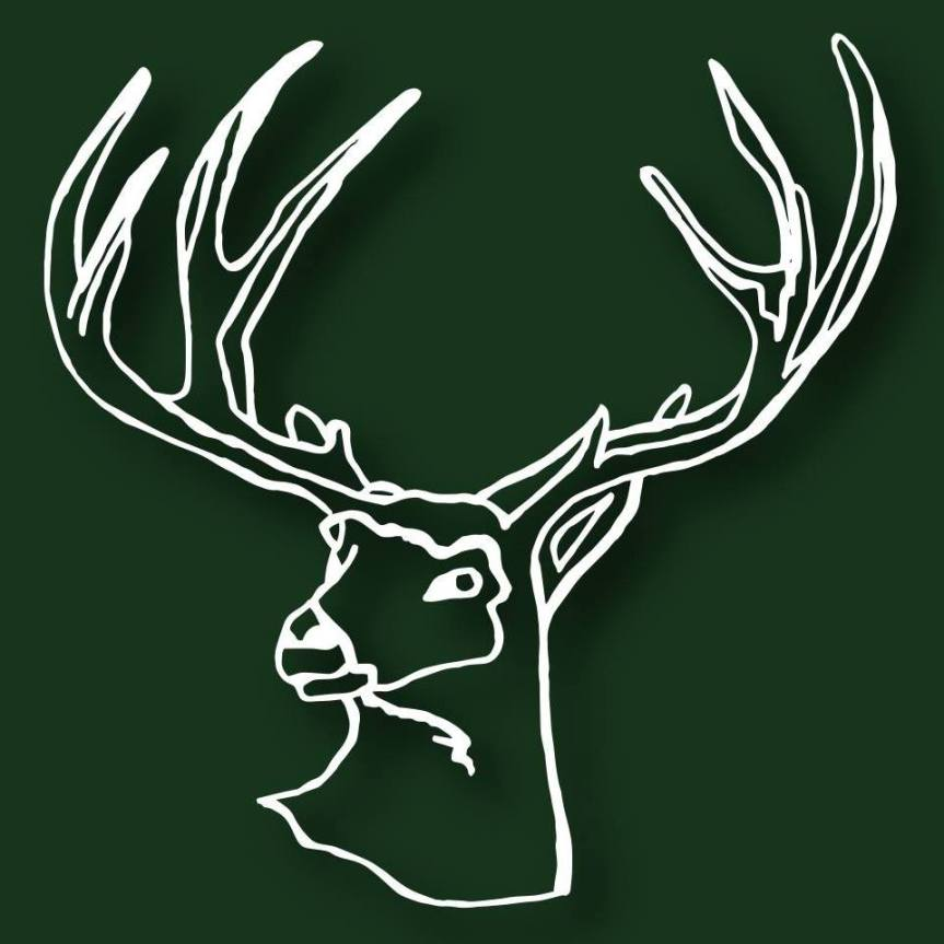 stag arms logo.jpg