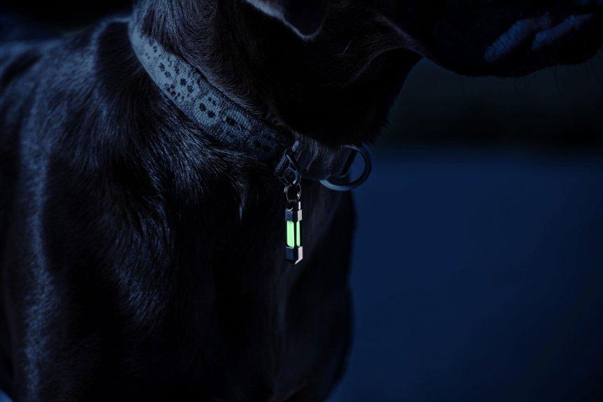glow rhino tritium fob glowing keychain edc gear 2