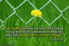 inspirational-quote-be-thankful
