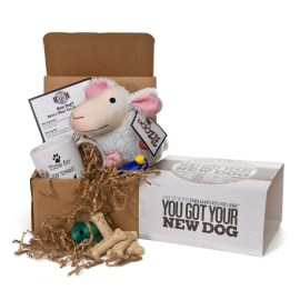 Got Your New Dog Kit from Uncommon Goods