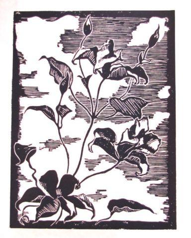 Judith Reeve Printmaking