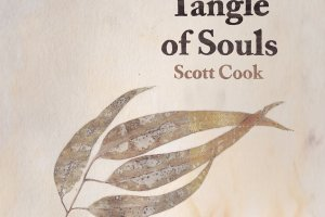 scott cook tangle of souls