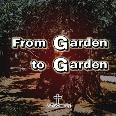 From Garden to Garden. Gethsemane