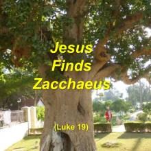 Jesus Finds Zacchaeus