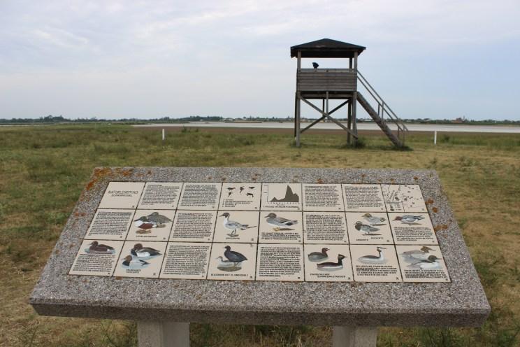 Zicklacken lake's bird tower
