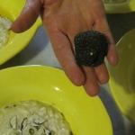 black truffle w risotto