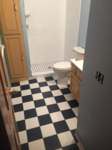 Chanhassen, MN Bathroom Remodel