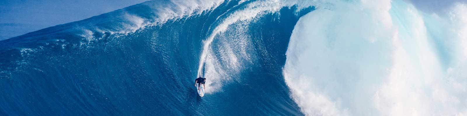 Surfe die Welle der Digitalisierung