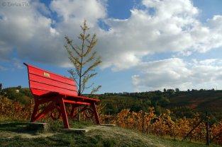 Panchina Rossa, Clavesana