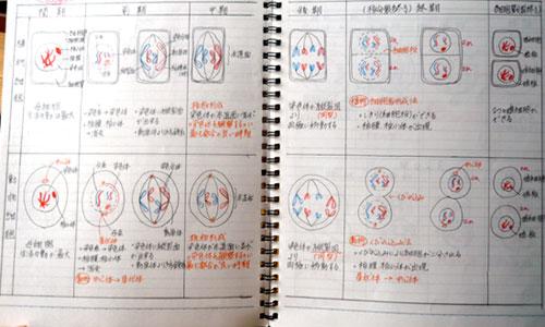 toudaisei_note2