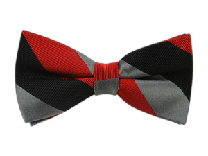 A bow tie matching the Attire Club colors
