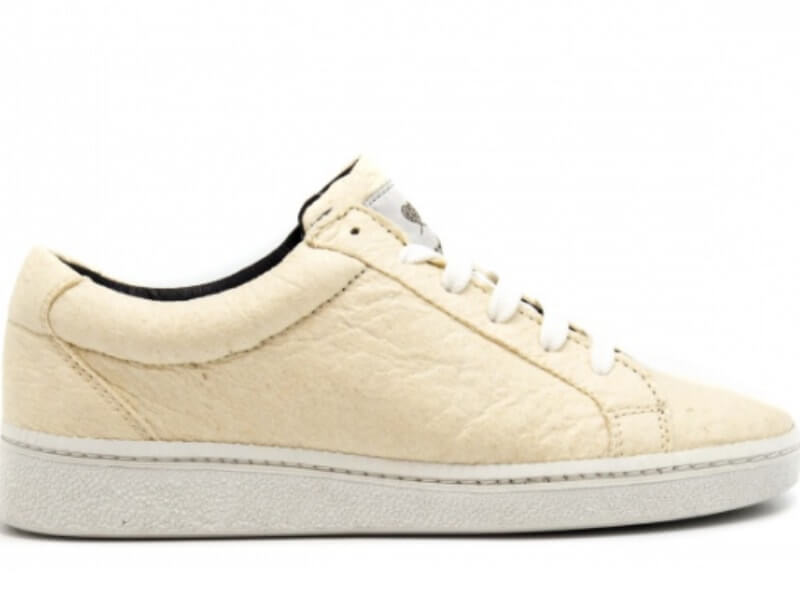 White Pineapple leather Sneakers