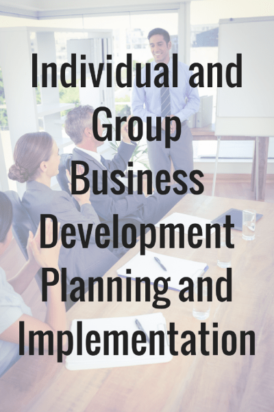 Individual and Group Business Development Planning and Implementation