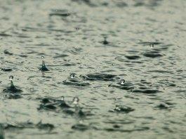 rain water money attraction method