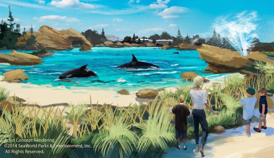 seaworld new killer whale habitat