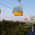 Disney Skyliner to resume operation this week after recent incident