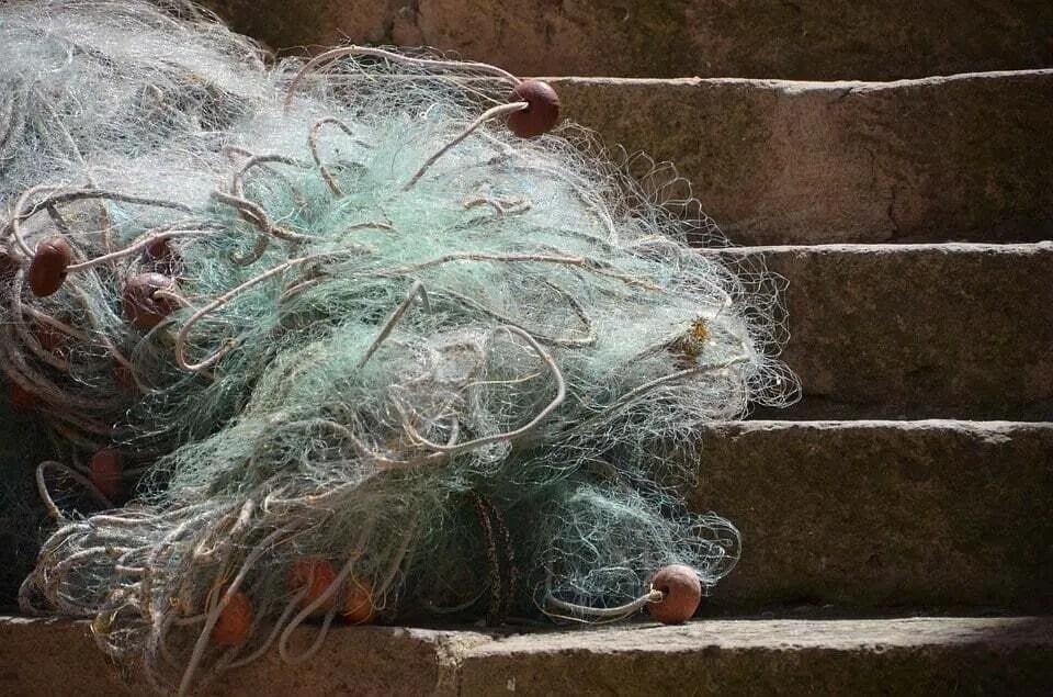 Tangle net Fishing