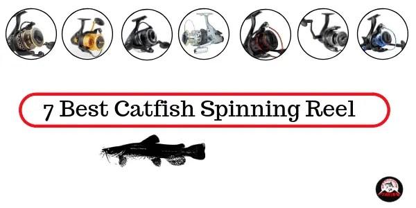 Best Catfish Spinning Reel