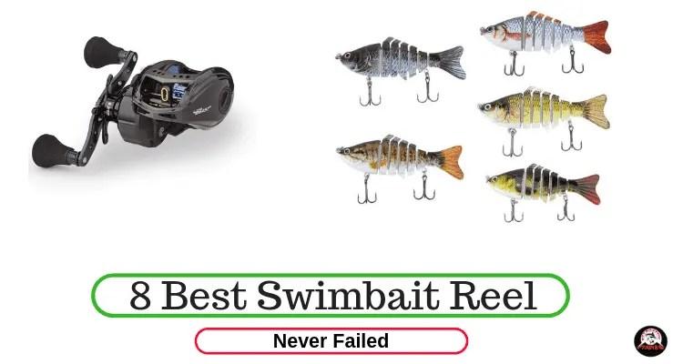 Best Swimbait Reel