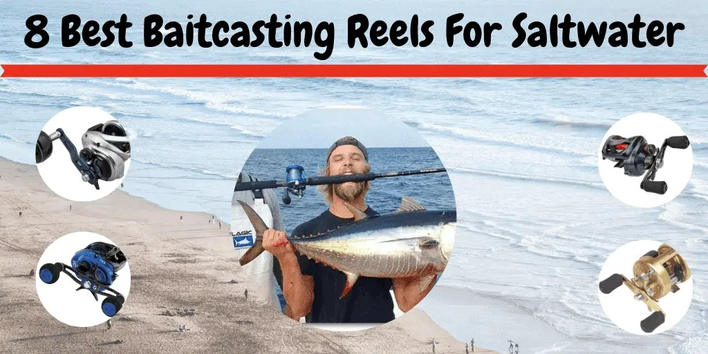 Best Baitcasting Reels For Saltwater