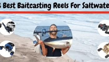 11 Best Tuna Fishing Reels 2019 [Never Failed A Tuna Fish]