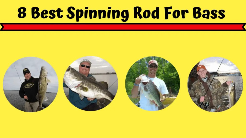 Best Spinning Rod For Bass
