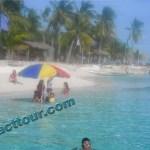 Sillion Island