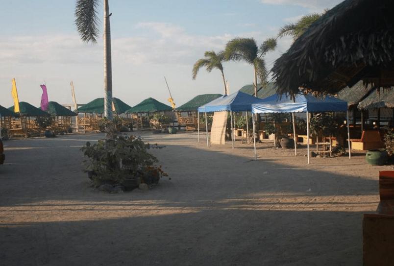 Shelton Resort