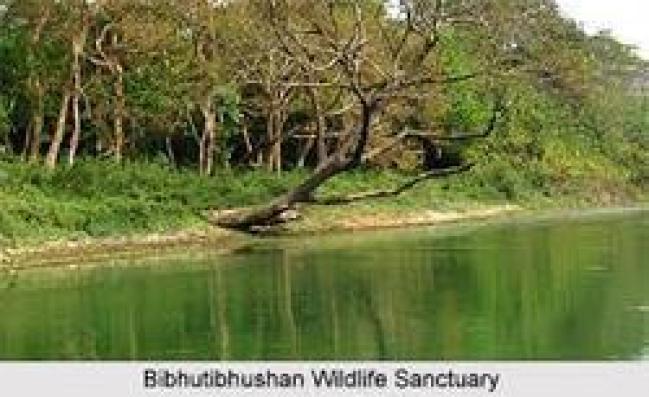 bhimbandh-wildlife-sanctuary-250x250
