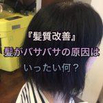『髪質改善』髪がバサバサの原因はいったい何?《大阪千林守口》