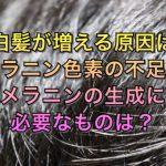 白髪が増える原因はメラニン色素の不足!メラニンの生成に必要なものは?