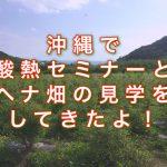 沖縄で酸熱セミナーとヘナ畑の見学をしてきたよ!