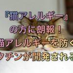 猫アレルギーの方に朗報!猫アレルギーを防ぐワクチンが開発される!