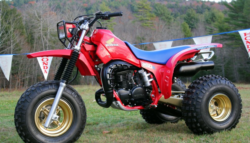 Ask the Editors: Need Bushings for my 250R Project - ATVConnection com