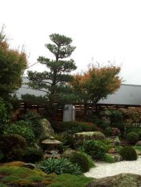 Pataka: Zen garden #291