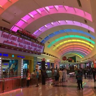 the biggest mall: Dubai Mall