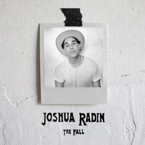The Fall - Joshua Radin
