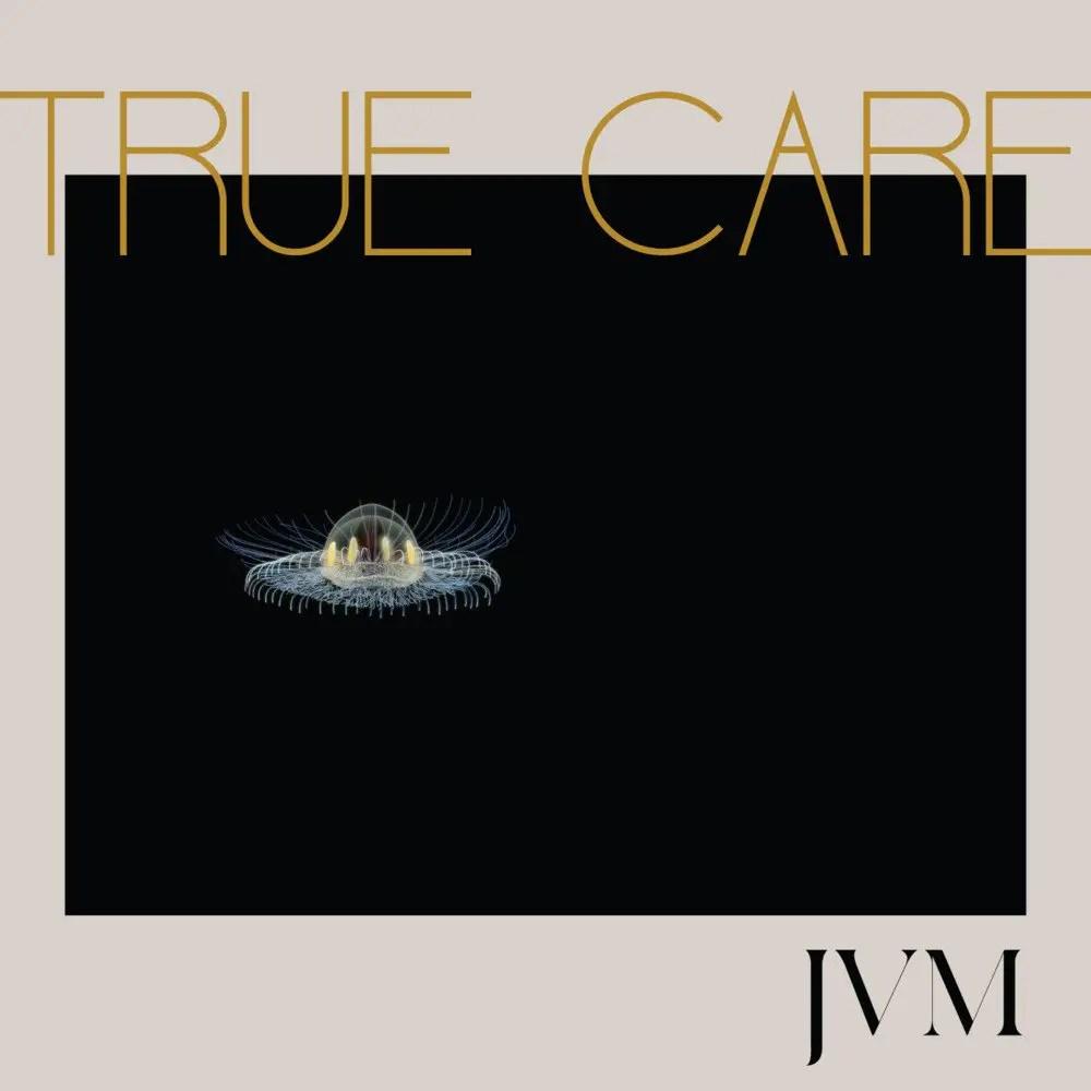 Afbeeldingsresultaat voor Mcmorrow, James Vincent-True Care -Download-