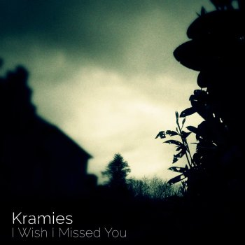 I Wish I Missed You - Kramies