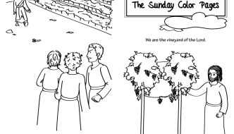 27th Sunday in Ordinary Time Coloring Pages