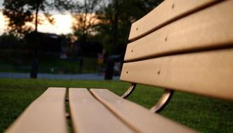 Bench at dusk
