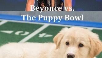 Super Bowl Half-Time Show: Beyoncé vs. The Puppy Bowl