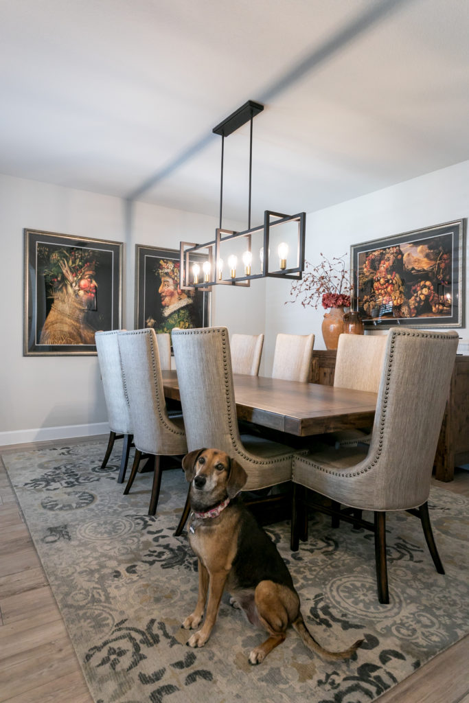 pet-proof your home - dog dining room