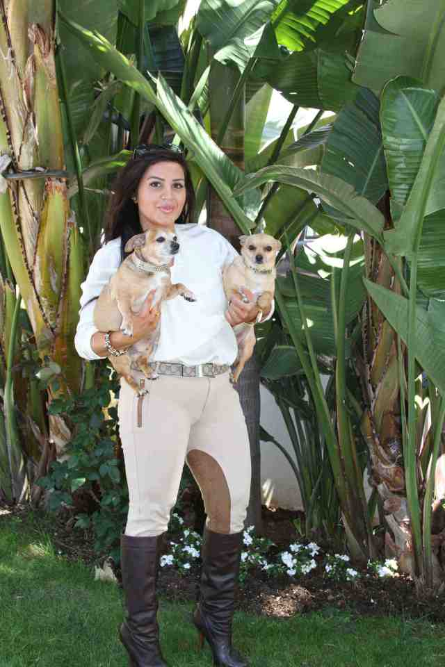 shahs-of-sunset-mj-dog-chihuahua