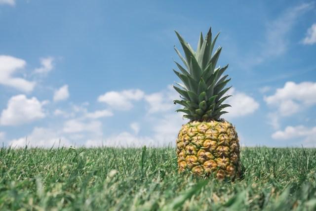 Hey ya pineapple!