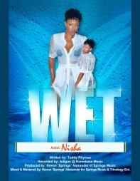 """Single cover for the 2012 Groovy Soca tune """"Wet"""""""